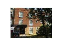 Well Presented Spacious 2 Bedroom Flat in quiet cul de saq in Handsworthwood,
