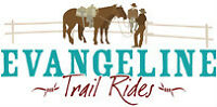 One of a Kind Experience for Women Who Love Horses!