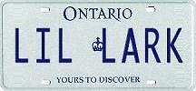 Personalized License Plate LIL LARK Kingston Kingston Area image 1