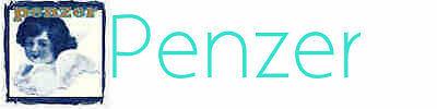 penzer-online