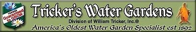 William Tricker Inc Water Gardens