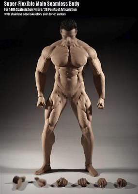 NEW TBLeague Phicen M35 1/6 scale Male Seamless Super Muscular Body in stock