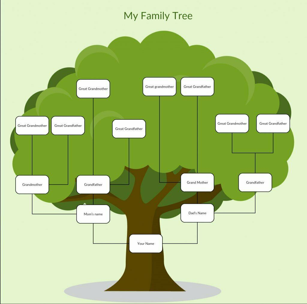 where can i find info on my family tree