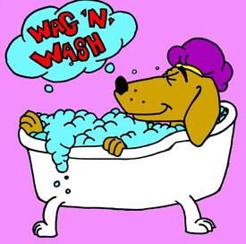 **Wag N Wash Dog Grooming Salon**