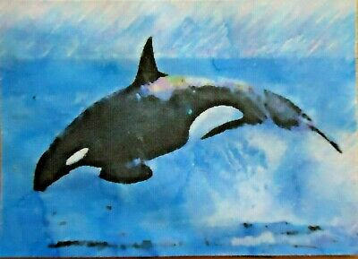 ACEO ATC Orca Whale Hand-Rendered Wet Watercolor