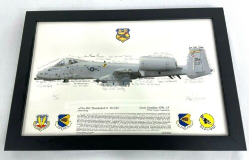 US Air Force 35th Fighter Squadron A-10 Squadron Signed & Framed Print