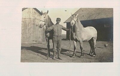 RPPC,Man with 2 Horses,c.1910 for sale  Shipping to Canada