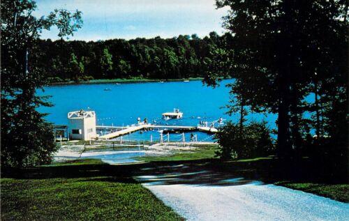 MI Jones Wood Lake Boy Scout Reservation Camp Tamarack Dexter Press postcard BS3