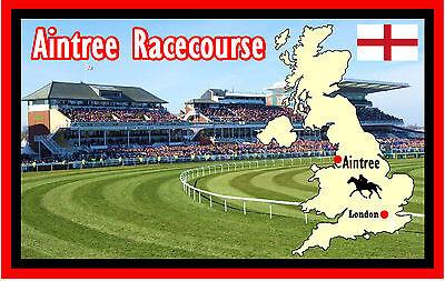 HORSE RACING (AINTREE RACECOURSE) - FUN SOUVENIR NOVELTY FRIDGE MAGNET - GIFTS