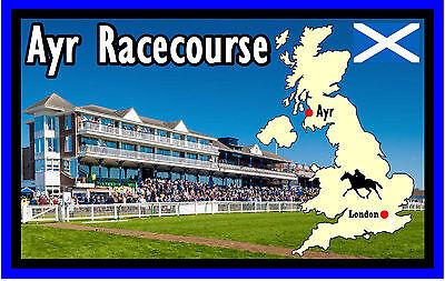 HORSE RACING (AYR RACECOURSE) - FUN SOUVENIR NOVELTY FRIDGE MAGNET - GIFTS