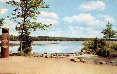 Itasca State Park Wisconsin Headwaters Of The Mississippi River Postcard 1957