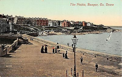 Northern Ireland Postcard The Pickie Bangor Co Down L0 001