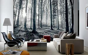 Papier peint photo mural 366x253cm noir et blanc for t - Papier peint foret noir et blanc ...