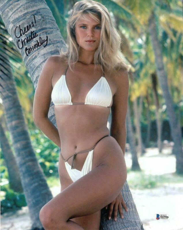 Image result for hot christy brinkley