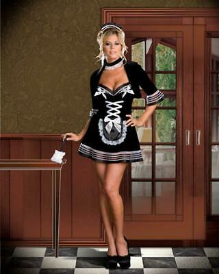 Authentic Dreamgirl 6441 - Sexy Maid My Day Costume - Size Medium USA Seller