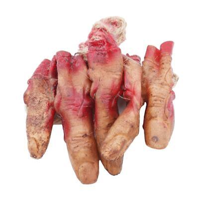 Halloween Scary Fake Body Parts Bloody Arm Hand Foot Severed Tricky Prank H](Severed Body Parts)