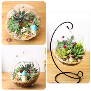 DIY Hydroponic Plant Flower Hanging Glass Vase Container Home Garden Decor UK