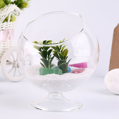 Home Deco Hydroponic Aquarium Fish Glass Vase Tank Plant Container Terrarium XY