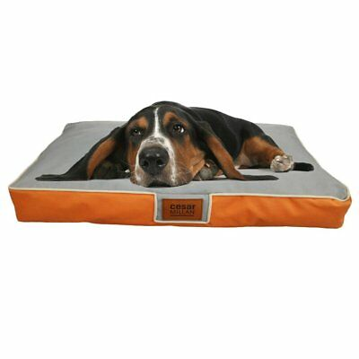 Orthopedic Extra Large  Pet Dog Bed Mat Waterproof Removable Cover HM