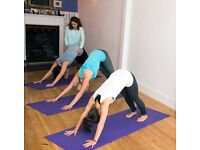 Beginners Yoga Course. Wednesdays 7.30-8.30pm. Starts of the 18th of January for 8 weeks. £72