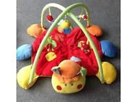 lady bug play mat