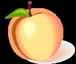 Peachcountry