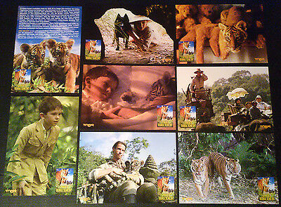 Lobby Card Set~ TWO BROTHERS ~2004 ~Freddie Highmore ~Guy Pearce ~Tiger Cubs