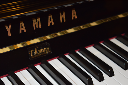 Private Piano Lessons for Beginners - FIRST LESSON FREE!