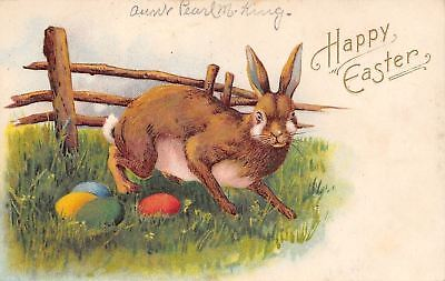 Easter~Cute Rabbit~Long Whiskers~Finds Colored Eggs by Rail Fence~Emboss~Germany](Rabbit Whiskers)