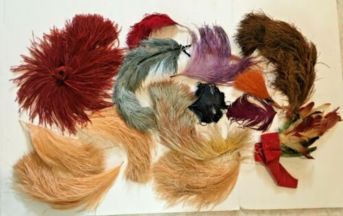 Antique and Vintage 10 OSTRICH FEATHERS AND PLUMES Assorted colors and sizes