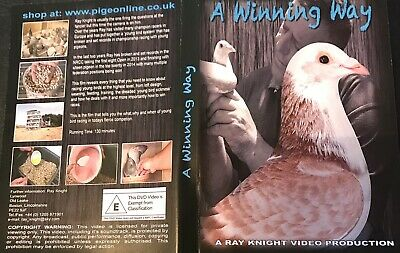 A Winning Way , Racing Pigeon Dvd