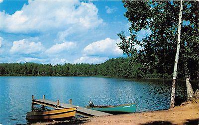 NEW BUFFALO MICHIGAN~FISH LADEN LAKE~WOOD BOATS GREETINGS  POSTCARD 1957