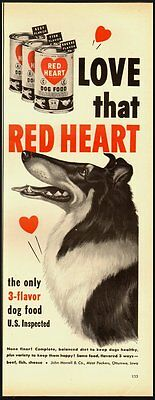 1951 Vntage ad for RED HEART Dog Food/Great Collie Illustration (022713)