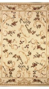 Transitional Floral Area Rug 8x11 new unopened