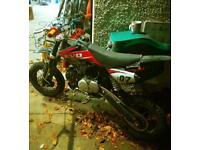 Evo 140 pit bike mini moto 125