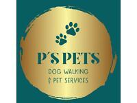 P's Pets Dog Walking & Pet Services
