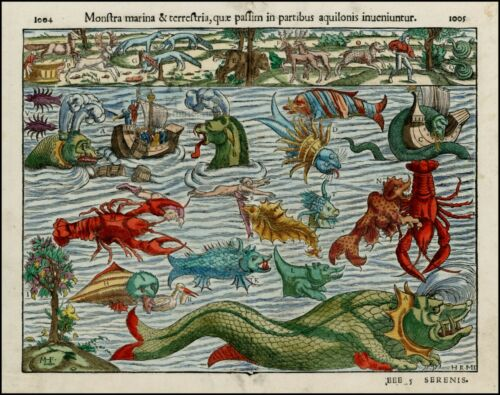 Reproduction Monstra Marina OLD Sea Monsters by Munster Poster Picture Print NEW