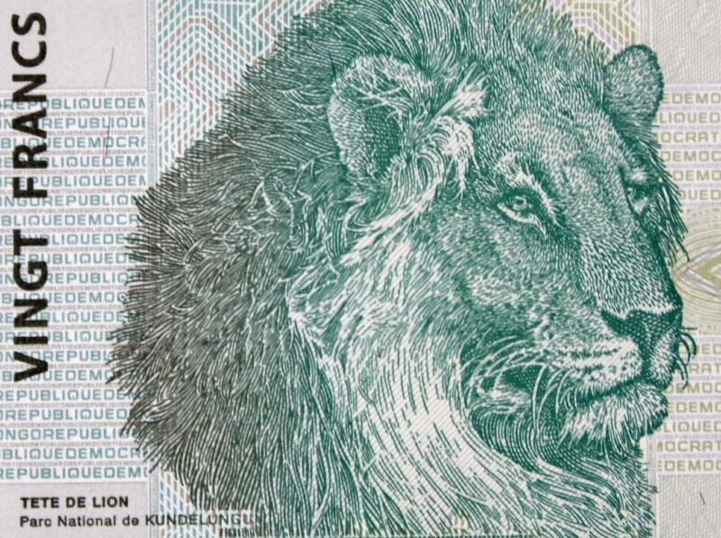 Lion Head on Banknote 2003 Congo 20 Francs African Paper Money Authentic