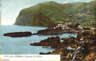 Madeira - Camara de Lobos., Ansichtskarte um 1910