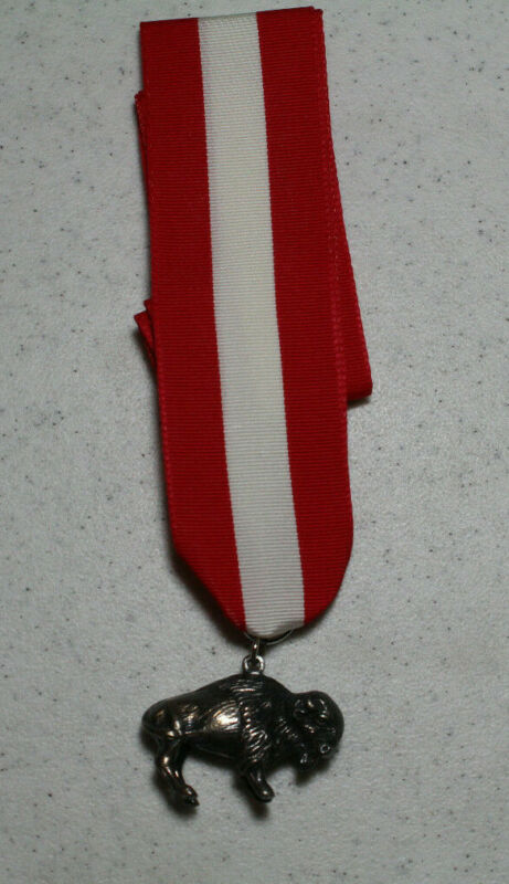 Boy Scout Sterling Silver Buffalo Award Medal with ribbon