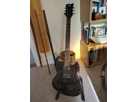LTD Viper 100FM w/ Warman P90 Pickups