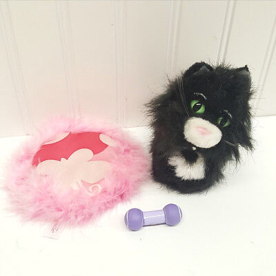 American Girl Pet Licorice the Cat with Pillow and Toy (A12-18)