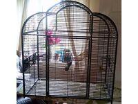 Medium sized bird cage (no base) + accessories