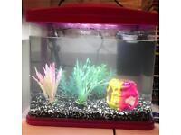 fishbox 13litre tank
