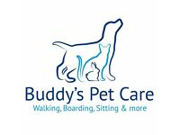 Professional Dog Walking, Home Boarding & Pet Visits in the Reading Area