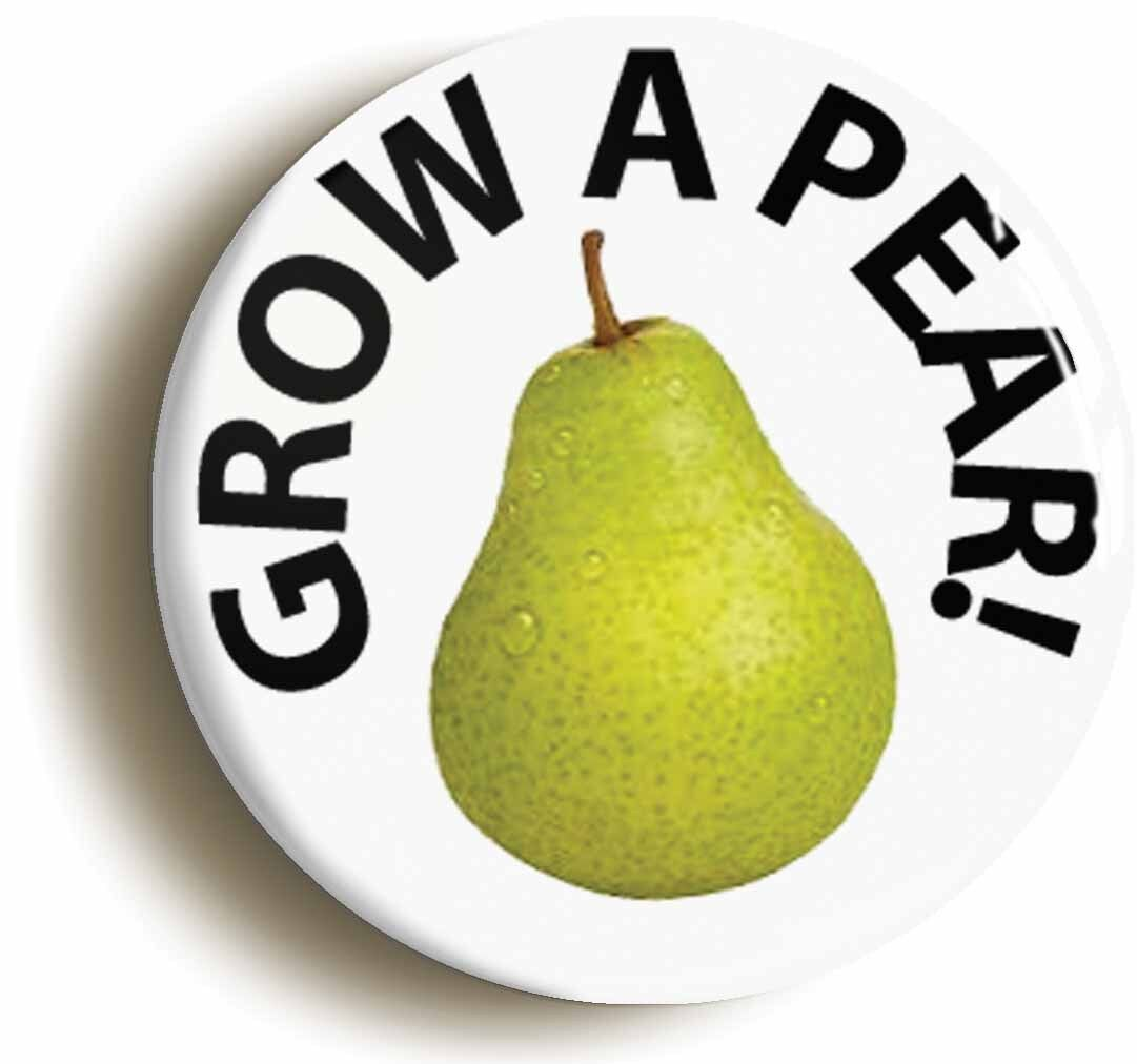 PAIR GARDENING Size is 1inch//25mm diameter GROW A PEAR FUNNY BADGE BUTTON PIN