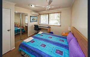 big bedroom with private bathroom in Robertson near Griffith Uni Robertson Brisbane South West Preview