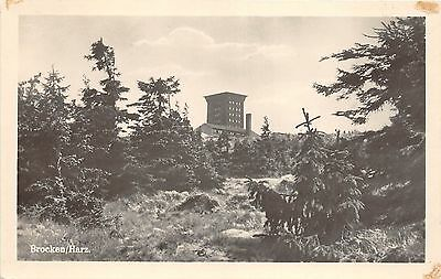Bg28596 Brocken Harz   Germany  Cpsm 14X9cm