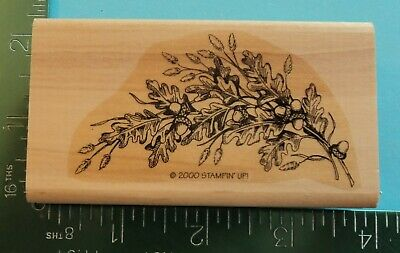 OAK TREE BRANCHES  LEAVES ACORNS Rubber Stamp by STAMPIN UP