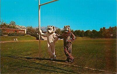 c1950s Alinco Products - Mascot Costume Makers, Salt Lake City, Utah Postcard](Costumes Salt Lake City)